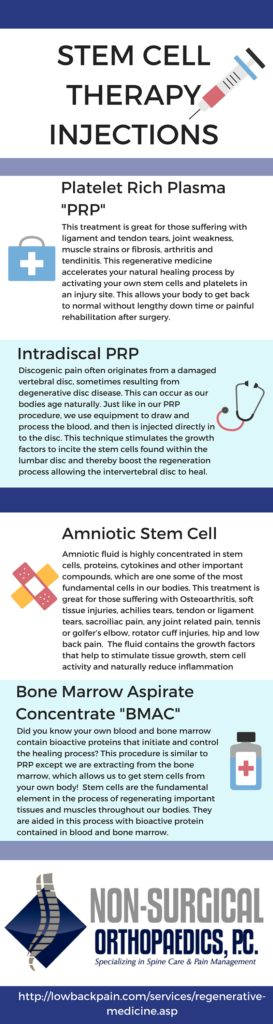 Stem Cell Infographic (1)